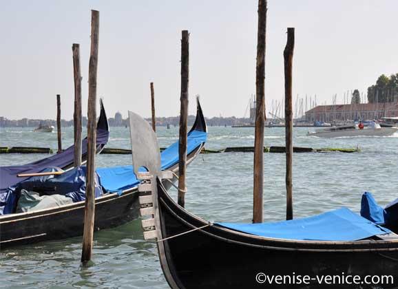 Les gondoles de l'hotel Danieli au premier plan,l'ile san giorgio maggiore en arrière lan