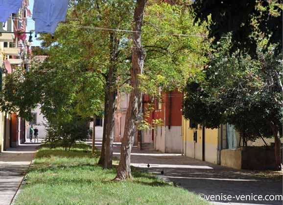Un quartier avec des arbres sur l'île de la giudecca.